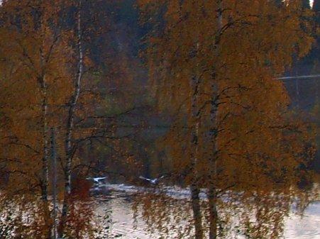 suomen toisiksi suurin järvi